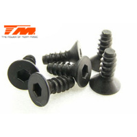 Flat Head Self Tapping screw 3x8 6pce