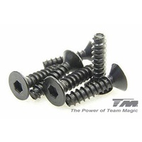 3x12mm Steel F.H. Self-Tapping Screw (6)
