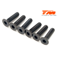 3.5x14mm Steel FH Screw (6)