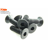 3x10mm Steel F.H. Screw (6)