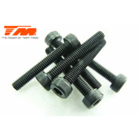 3x20mm Cap Screw (6)