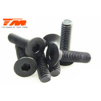 3x14mm Steel FH Screw (6)